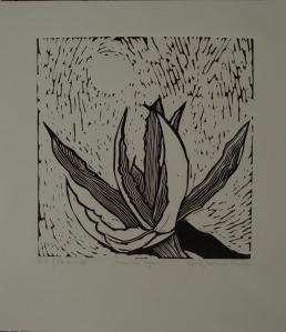 1 Mamina agava